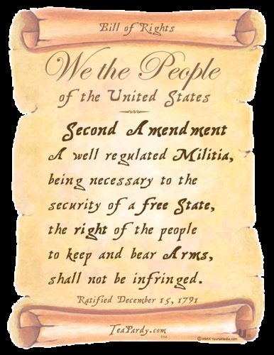 2nd-Amendment-of-Bill-of-Rights-by-Artwork-by-Youra-Media-qpps_144214825536283.LG