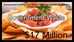 Government Waste
